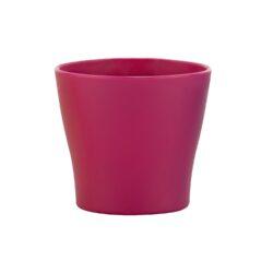 Вазон пл. Гардения Кактус розовый