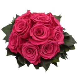 Роза Hottie 1