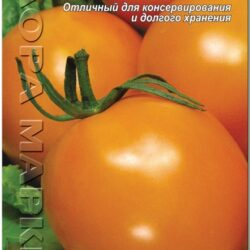 de-barao-oranzhevyj