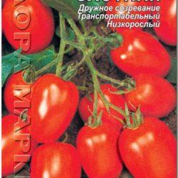 tomat-krasnyj-ohotnik