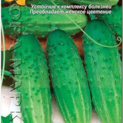 ogurec-veselye-motylki